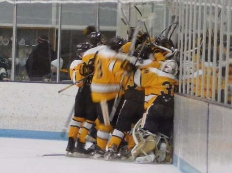 The team celebrates after Chad Messerich scored the game winning goal in overtime.