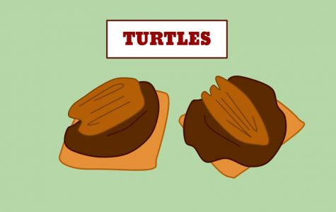 Candy Turtles