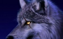 The Wolf's Fang